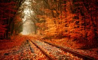 Az ősz remek lehetőség a kirándulók számára, ha éppen nem esik az eső. Menjünk kis gyakran ilyenkor a természetbe