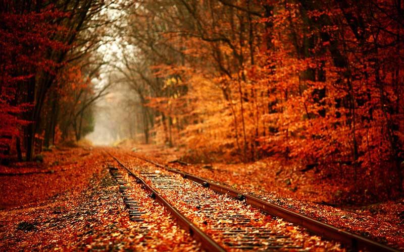 Az ősz remek lehetőség a kirándulók számára, ha éppen nem esik az eső