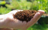 Hőszigetelés kókuszrosttal – nem csak biomatrachoz kitűnő a rostlemez
